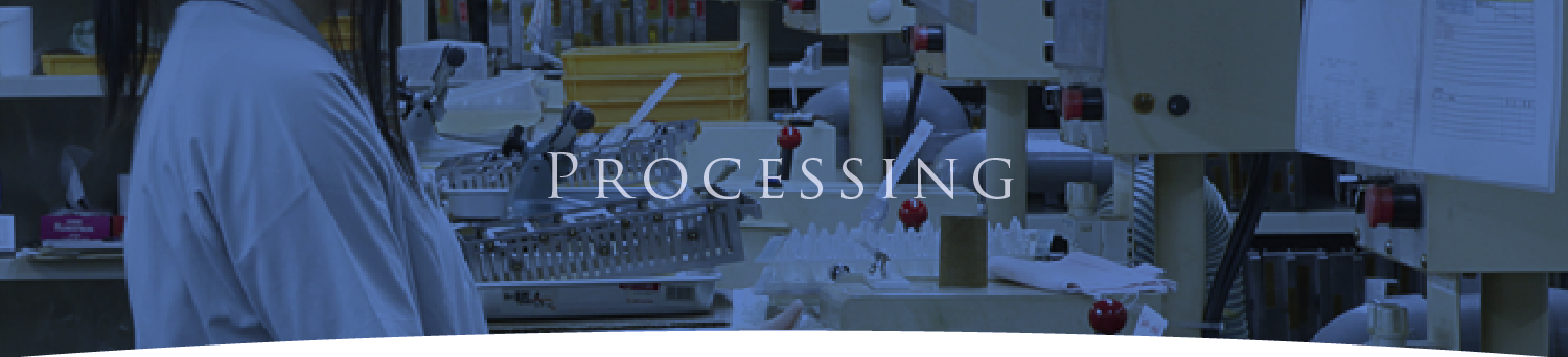 processing flow